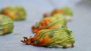 Kwiaty cukinii nadziewane ricottą